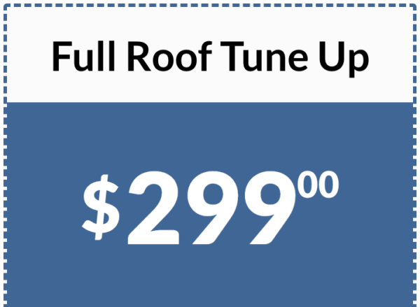 Full Roof Tune Up Price Offer